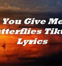 You Give Me Butterflies Tiktok Lyrics