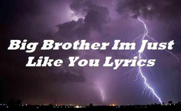 Big Brother Im Just Like You Lyrics