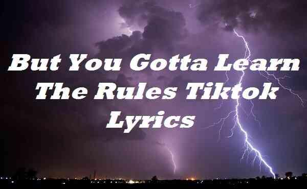 But You Gotta Learn The Rules Tiktok Lyrics