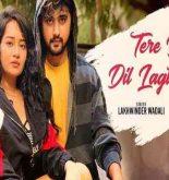 Tere Bina Dil Lagta Nahi Lyrics