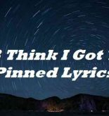 123 Think I Got You Pinned Lyrics