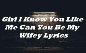 Girl I Know You Like Me Can You Be My Wifey Lyrics