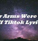 Her Arms Were Cut Off Tiktok Lyrics