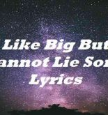 I Like Big Butts Cannot Lie Song Lyrics