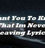 I Want You To Know That Im Never Leaving Lyrics