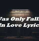 I Was Only Falling In Love Lyrics