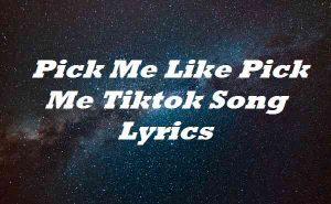 Pick Me Like Pick Me Tiktok Song Lyrics