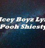 So Icey Boyz Lyrics Pooh Shiesty