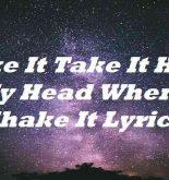 Take It Take It Hold My Head When I Shake It Lyrics