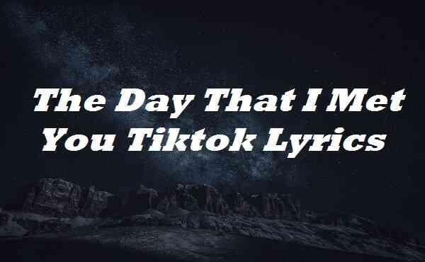 The Day That I Met You Tiktok Lyrics