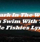 A Shark In The Water You Swim With The Little Fishies Lyrics