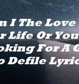 Am I The Love Of Your Life Or You Are Looking For A Girl To Defile Lyrics