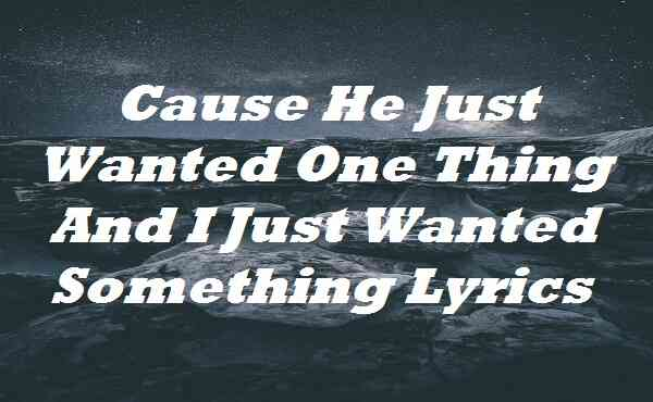 Cause He Just Wanted One Thing And I Just Wanted Something Lyrics