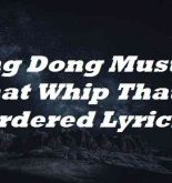 Ding Dong Must Be That Whip That I Ordered Lyrics