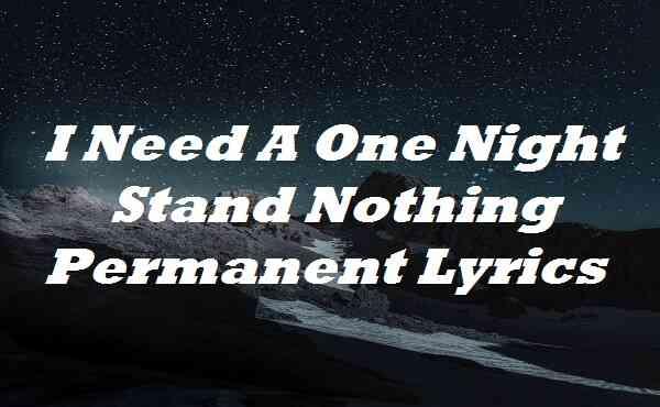I Need A One Night Stand Nothing Permanent Lyrics