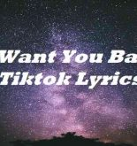 I Want You Back Tiktok Lyrics