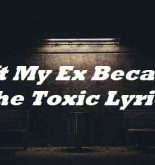 Left My Ex Because She Toxic Lyrics