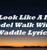 Look Like A Ig Model Walk With A Waddle Lyrics