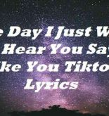 One Day I Just Want To Hear You Say I Like You Tiktok Lyrics