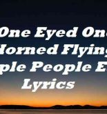 One Eyed One Horned Flying Purple People Eater Lyrics