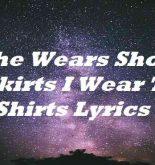 She Wears Short Skirts I Wear T Shirts Lyrics