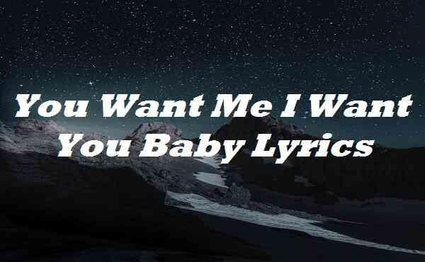 You Want Me I Want You Baby Lyrics