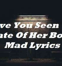 Have You Seen The State Of Her Body Mad Lyrics