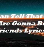 I Can Tell That We Are Gonna Be Friends Lyrics
