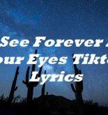 I See Forever In Your Eyes Tiktok Lyrics