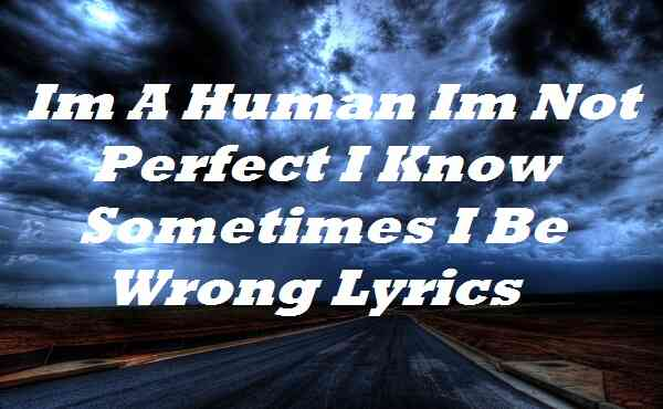 Im A Human Im Not Perfect I Know Sometimes I Be Wrong Lyrics