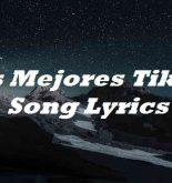 Los Mejores Tiktok Song Lyrics