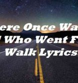 There Once Was A Girl Who Went For A Walk Lyrics