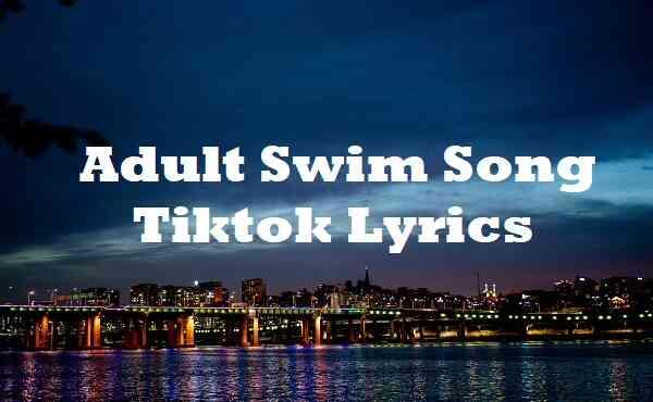 Adult Swim Song Tiktok Lyrics