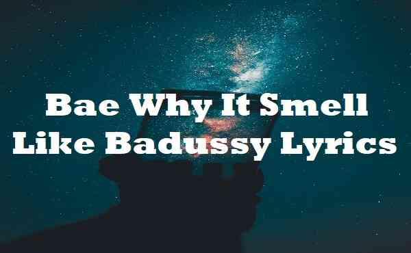 Bae Why It Smell Like Badussy Lyrics