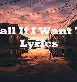 Ball If I Want To Lyrics