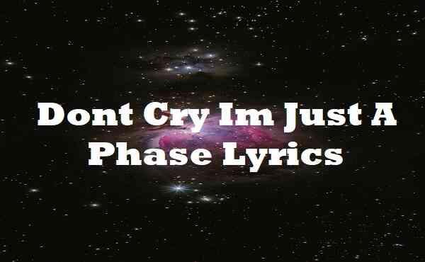 Dont Cry Im Just A Phase Lyrics