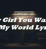 Hey Girl You Wanna Be My World Lyrics
