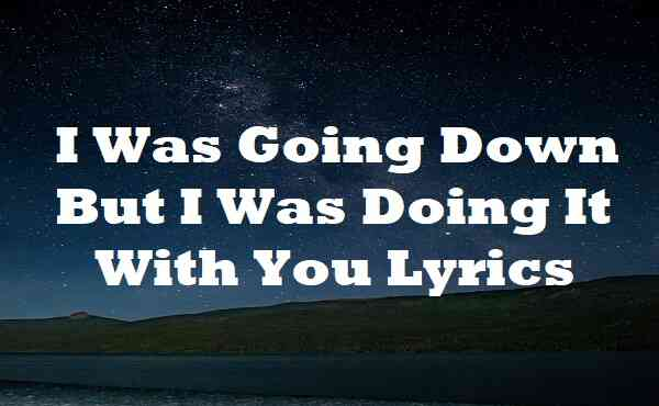 I Was Going Down But I Was Doing It With You Lyrics