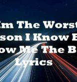 Im The Worst Person I Know But I Know Me The Best Lyrics