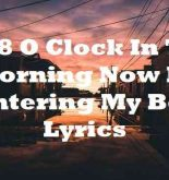 Its 8 O Clock In The Morning Now Im Entering My Bed Lyrics