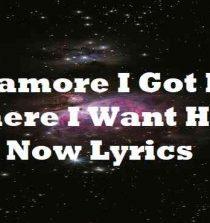 Paramore I Got Him Where I Want Him Now Lyrics