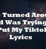 She Turned Around and Was Trying to Put My Tiktok Lyrics