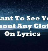 Want To See You Without Any Clothes On Lyrics