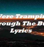Were Tramping Through The Bush Lyrics