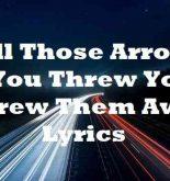All Those Arrows You Threw You Threw Them Away Lyrics