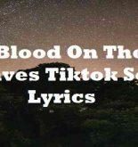 Blood On The Leaves Tiktok Song Lyrics