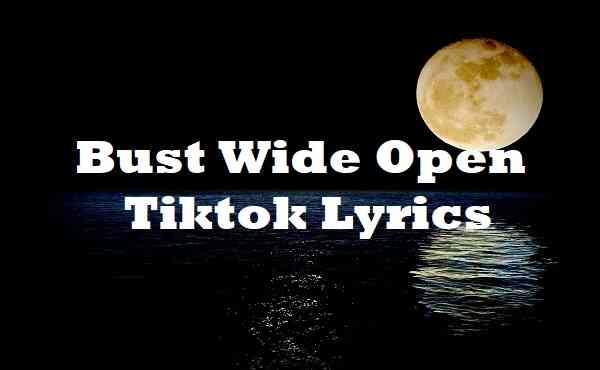 Bust Wide Open Tiktok Lyrics