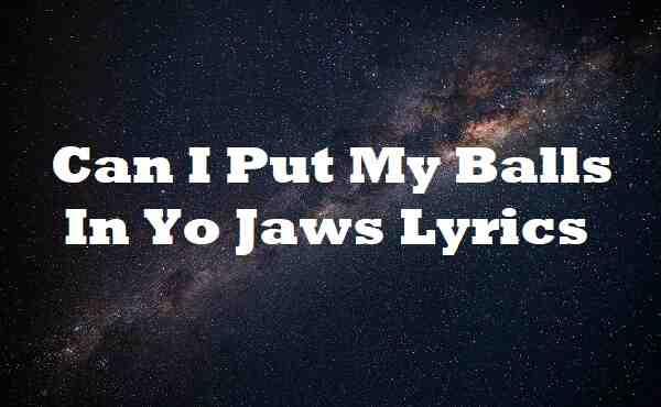 Can I Put My Balls In Yo Jaws Lyrics