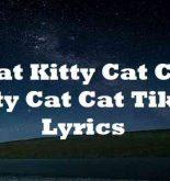 Cat Kitty Cat Cat Kitty Cat Cat Tiktok Lyrics