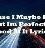 Cause I Maybe Bad But Im Perfectly Good At It Lyrics